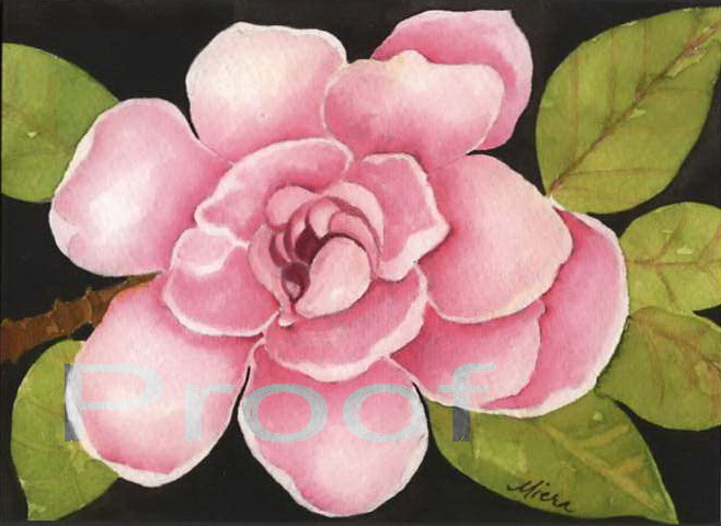 watercolor greeting cards tucson az, Beautiful flower